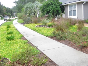 Florida-Friendly-Landscape-Gold-Certified-Yard