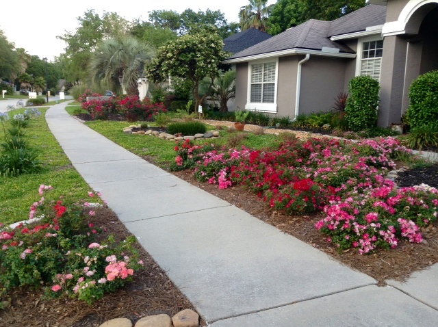 HOA Loses Lawsuit Against Duval County Couple For FFL Yard